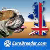 German Shepherd Dog Breeders and Kennels - EuroBreeder.com