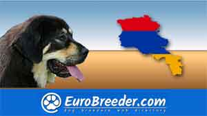Find a dog breeders in Armenia
