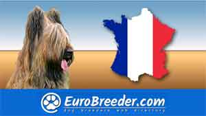 Find a dog breeders in France