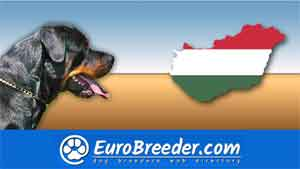 Find a dog breeders in Hungary