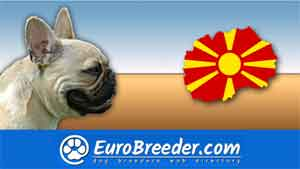 Find a dog breeders in Macedonia