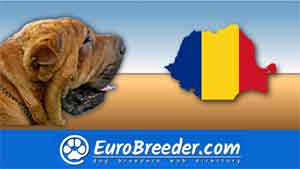 Find a dog breeders in Romania