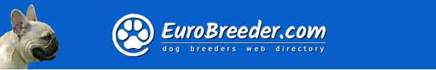 French Bulldog Dog Breeders - EuroBreeder.com