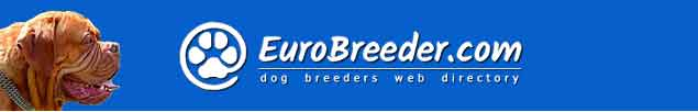 Dogue de Bordeaux Breeders - EuroBreeder.com