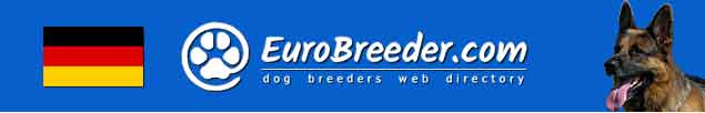 Germany Dog Breeders - EuroBreeder.com