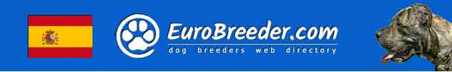 Spain Dog Breeders - EuroBreeder.com