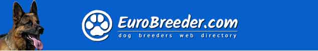 German Shepherd Dog Breeders - EuroBreeder.com