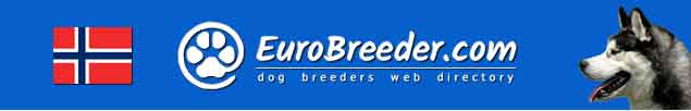 Norway Dog Breeders - EuroBreeder.com