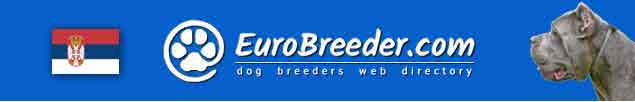 Serbia and Montenegro Dog Breeders - EuroBreeder.com
