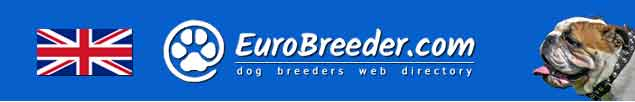 United Kingdom Dog Breeders - EuroBreeder.com