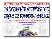 Duntarvie Rottweilers, Dogue De Bordeaux and Black Pugs