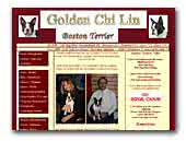 Golden Chi Lin Boston Terrier Kennel
