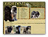 Kennel of Newfoundland Dogs and Caucasian Mountain Dogs Kara Deniz