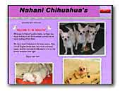 Nahani Smooth Coat Chihuahuas