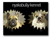 Nyakabully Kennel Bulldogs