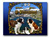 St. Pierre Saint Bernard Dog kennel