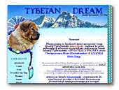 Tybetan Dream