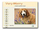 Very-Merry Apricot and Red Standard Poodle kennel