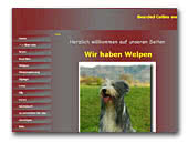 Bearded Collie vom Worblinger Hard