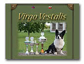 Virgo Vestalis Welsh Corgi Cardigan