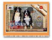 BernEwa's Kennel