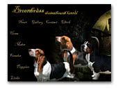 Breenbrass Basset Hound kennel