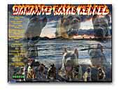 Diamante Rayas Kennel