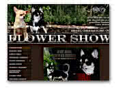 'Flower Show' chihuahua kennel