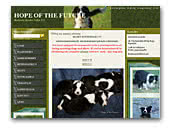 Hope Of The Future - Hodowla Border Collie