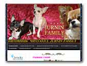 Jurnin Family Chihuahua Kennel