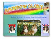 Rainbow Glory Shetland Sheepdogs