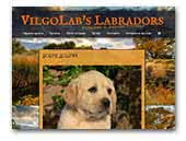 Labrador Retrievers Vilgolab's kennel