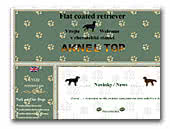 Aknel Top Flat Coated Retrievers
