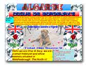 Algarde Dogue De Bordeaux