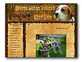 Beagle Green Place Poland FCI