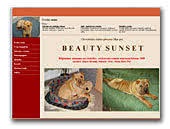 Beauty Sunset Sharpei  Kennel