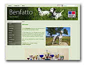 Dalmatian Kennel Benfatto