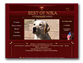 Labrador Retrievers and Shar Peis kennel Best Of Nika