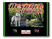 Siberian Huskies Bosniak siberians