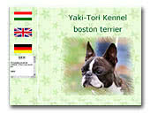 Yaki-Tori boston terriers