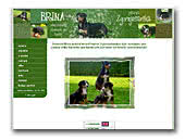 Kennel Zgornjesavska Great Swiss Mountain Dogs