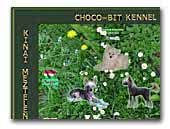 Chinese Crested Dog Choco-Bit kennel