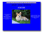 Agicor Welsh Corgi Pembroke