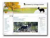 Border Collie Kennel Cranberry Cottage