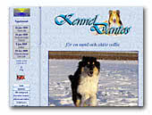Collie Rough Kennel Dantos