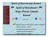 Spirit of Braveheart's Dogo Canario Kennel