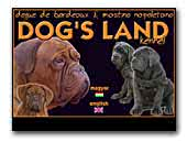 Dog's-land Mastino Napoletano Kennel