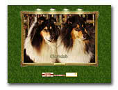 Collie kennel Eldvidzh