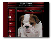 English Bulldog kennel Shaxaree