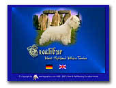 Excalibur West Highland White Terriers Kennel